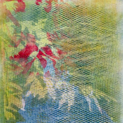 Green Leaves by Bill Brookover