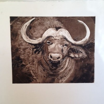 Water Buffalo by Cindy Mootz