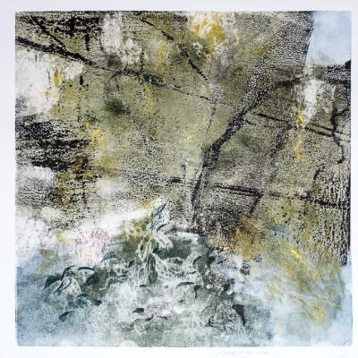 Wisteria Vine and Hydrangea by Barbara Nachmias-Kedesdy