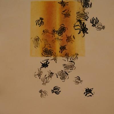 Macro invertebrates Yellow by Patty Stone