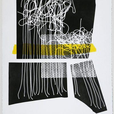 22 x 30 monotype/chine-collé, 2017