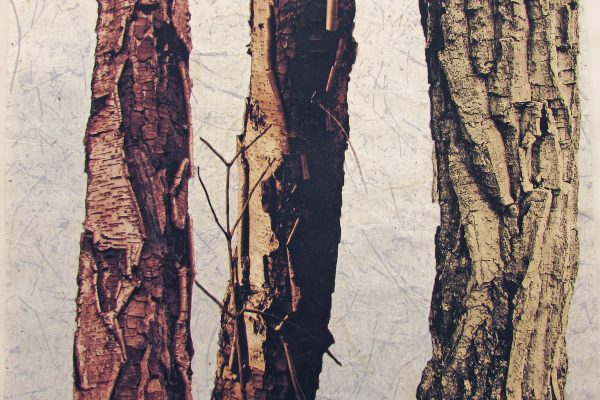 "Lynne Johnson, ""Bark Trio"" (monoprint)"
