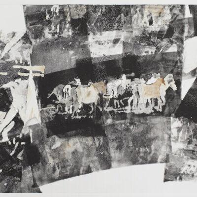 29 x 41 Monotype, 2020
